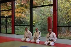 Jiu jitsu stage november 2016