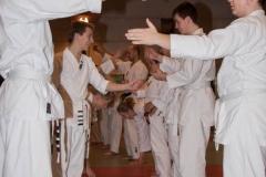 Karatestage.